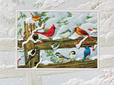 "Petite Boxed Christmas Cards - ""Winter Songbirds"""