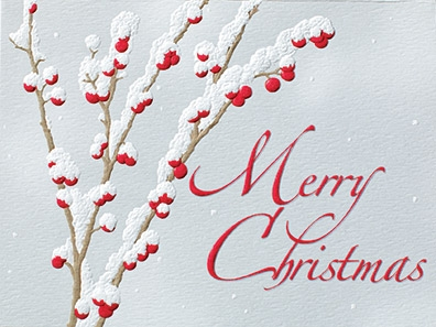 "Petite Boxed Christmas Cards - ""Winterberry"""