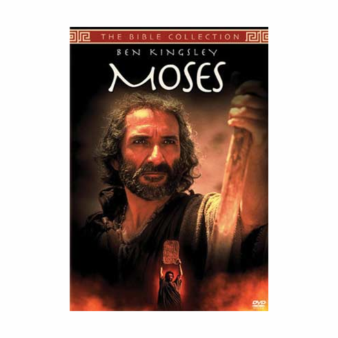 MOSES - TNT PRODUCTION