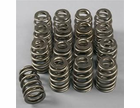 Comp Cams Valve Springs - (1 Left)