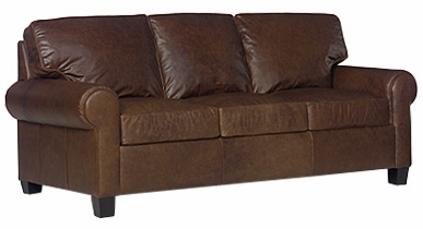Contemporary Leather Queen Sleeper Sofa w Rolled Arms
