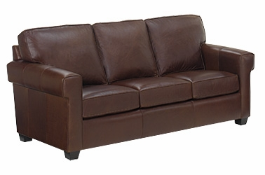 Apartment Loft Sized Leather Queen Sleeper Sofa