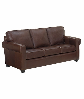 Apartment Loft Sized Leather Queen Sleeper Sofa Club Furniture