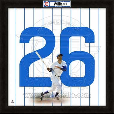"""Billy Williams, Cubs UNIFRAME 20"""" x 20"""""""