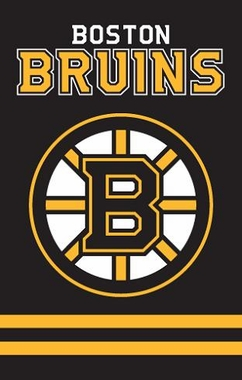 Boston Bruins Applique Banner Flag