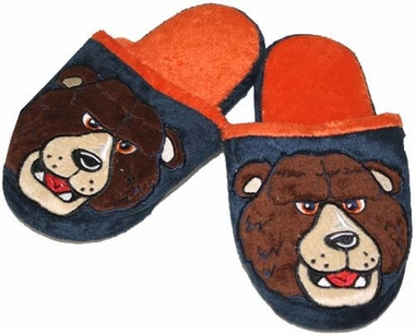Chicago Bears 2013 YOUTH Mascot Slide Slippers