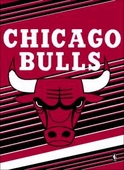 Chicago Bulls Flags & Outdoors
