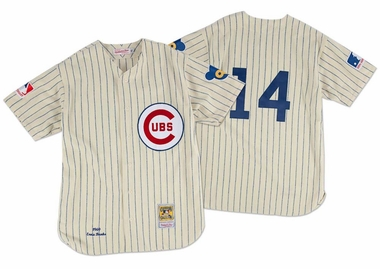 9e99bd75ea6 Chicago Cubs Ernie Banks Mitchell & Ness Authentic 1969 Pinstriped Jersey