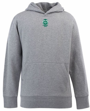 Colorado State YOUTH Boys Signature Hooded Sweatshirt (Color: Silver)