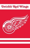 Detroit Red Wings Flags & Outdoors