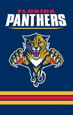 Florida Panthers Applique Banner Flag