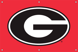 Georgia 2 x 3 Horizontal Applique Fan Banner