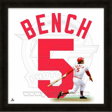"Johnny Bench, Reds UNIFRAME 20"" x 20"""