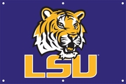 LSU Flags & Outdoors