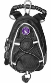 Northwestern Golf Accessories