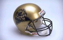 Pittsburgh Panthers Riddell Deluxe Replica Helmet