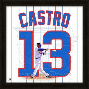 "Starlin Castro, Cubs UNIFRAME 20"" x 20"""
