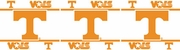 University of Tennessee Wall Decorations