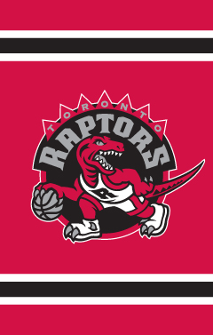 Toronto Raptors Applique Banner Flag