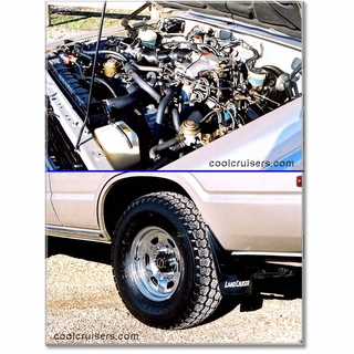 Click to View Motor and Tire