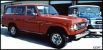 Pic / Info...FJ-60, 1985, Large Pic Only, Sold