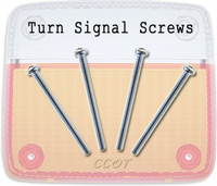 Screws - Turn Signal Lens - Front -  4 ea - Series 40/45/55