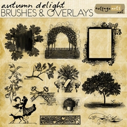 Autumn Delight Brushes & Overlays