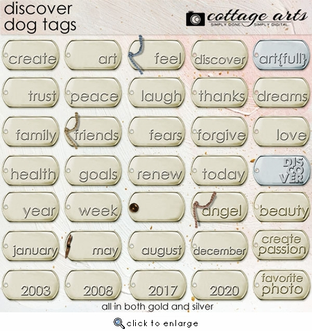 Discover Dog Tags