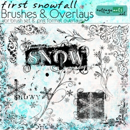 First Snowfall Brushes & Overlays
