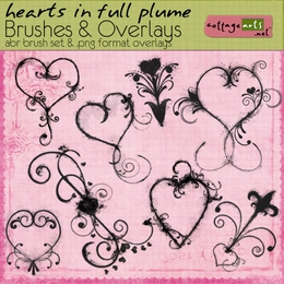 Hearts in Full Plume Brushes & Overlays