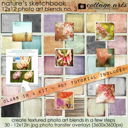 Nature's Sketchbook - Photo Art Blends 3
