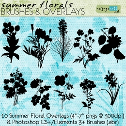 Summer Florals Brushes & Overlays