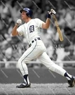 Alan Trammell - Detroit Tigers - Autograph Signing August 4th, 2019