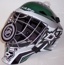 Dallas Stars NHL Full Size Youth Goalie Mask
