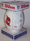 Tampa Bay Bucs - Wilson F1193 NFL® Signature Series Autograph Football