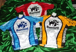 Team Banfield Sample