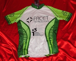 Team Facet  Sample