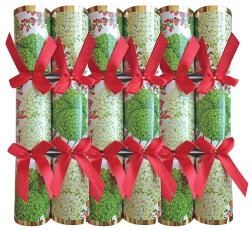 Christmas Crackers Fun Christmas Decorations