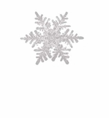 Christmas Placecards Snowflake