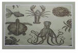 Decorative Doormats Sea Life
