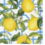 Garden Party Decoratioins Blue Seville Cocktail Napkins