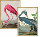 Note Cards Flamingo