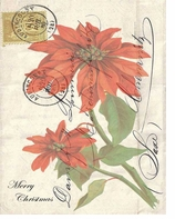 Paper Placemats Poinsettia
