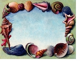 Paper Placemats Shells