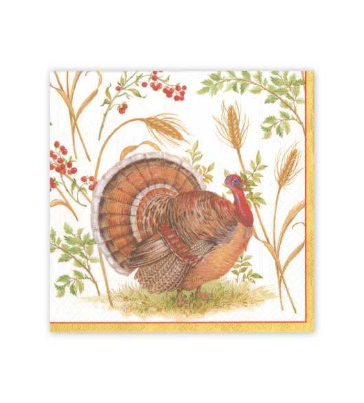 Thanksgiving napkins for thanksgiving dinner for Turkey napkins