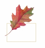 Thanksgiving Place Cards Leaves