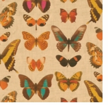 Wrapping Paper Butterfly Gold
