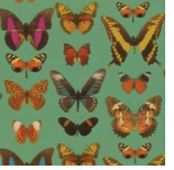 Wrapping Paper Butterfly Green