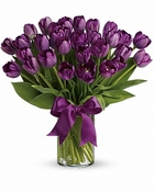 30 purple tulips - Designs East Florist Dallas