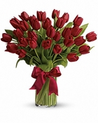 30 red tulips - Designs East Florist Dallas